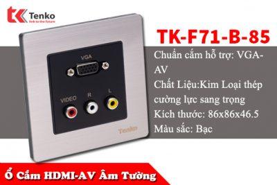 Ổ Cắm Âm Tường Cổng VGA Và Audio TK-F71-B-85